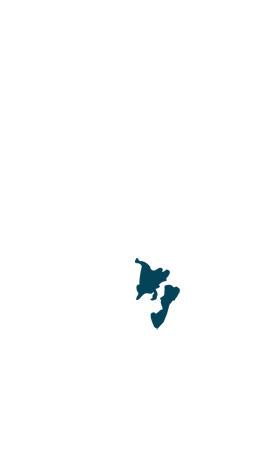 regionvi
