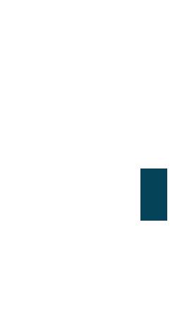 regionviii