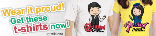 FlightAttendant copy